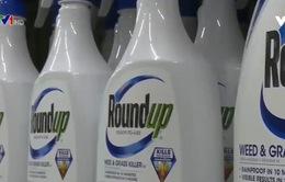 Dư luận Mỹ với vụ kiện công ty Monsanto