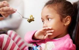 Vì sao bố mẹ không nên ép con trẻ ăn thức ăn mà chúng không muốn?