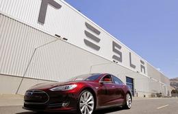 TP.HCM mời nhà sản xuất pin cho Tesla vào đầu tư