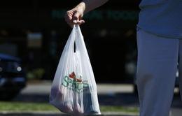 Lượng tiêu thụ túi nylon tại Anh giảm gần 90% sau 3 năm