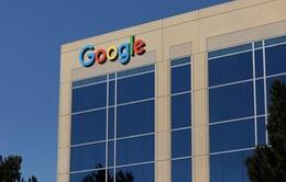 Google phát triển công cụ tìm kiếm cho Trung Quốc