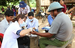 Đắk Lắk: Bệnh sốt rét tăng gấp 3 lần so với cùng kỳ 2018