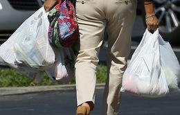 Túi nylon sẽ không còn chỗ đứng tại nhiều quốc gia