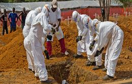 WHO: Tỉ lệ tử vong trong đợt dịch Ebola mới ở Congo là hơn 50%