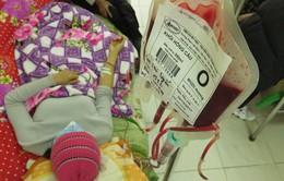 Cần 700 đơn vị máu nhóm O mỗi ngày cho cấp cứu và điều trị