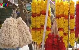 Thị trường hoa Ấn Độ mùa lễ hội Onam khốn đốn vì lũ lụt