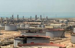 Công ty dầu mỏ Saudi Aramco hủy kế hoạch IPO