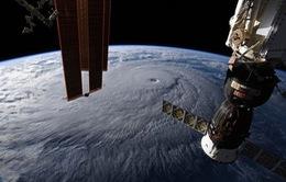 Hawaii chuẩn bị ứng phó cơn bão nguy hiểm