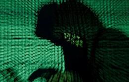 Tin tặc tấn công kho dữ liệu cử tri Đảng Dân chủ Mỹ