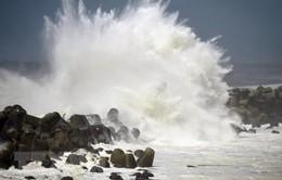 Giao thông tại Nhật Bản bị ảnh hưởng do bão Cimaron