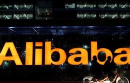 Cổ phiếu Alibaba sụt giảm bất chấp doanh thu tăng kỷ lục