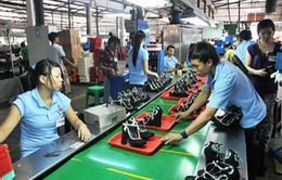 Cụm công nghiệp hỗ trợ đẩy mạnh ngành công nghiệp da giày Việt Nam