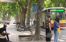 Hà Nội dự định đấu thầu 65 tuyến xe bus: Nhiều ý kiến lo ngại