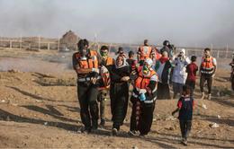 Mỹ tiếp tục cắt 200 triệu USD viện trợ cho Palestine
