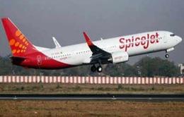 Ấn Độ lần đầu tiên thử nghiệm máy bay sử dụng nhiên liệu sinh học