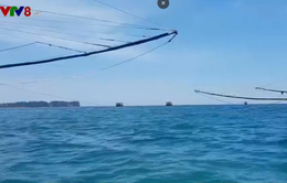 Quảng Trị tăng cường phòng chống buôn bán vật liệu nổ để đánh bắt hải sản