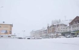 Bão tuyết bất thường ở Áo