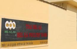 Lần đầu tiên Việt Nam xuất khẩu trứng ấp sang Myanmar