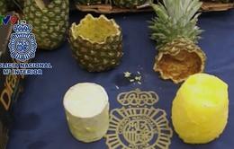 Tây Ban Nha tịch thu gần 70kg ma túy giấu trong dứa