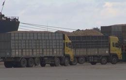 Quảng Ngãi: Xử lý ô tô chở gỗ dăm lộng hành trên quốc lộ