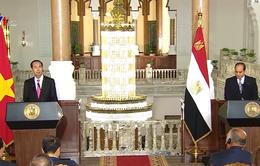 Việt Nam - Ai Cập quyết tâm đưa kim ngạch thương mại lên 1 tỷ USD