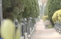 Giá đất nghĩa trang tại Trung Quốc tăng mạnh