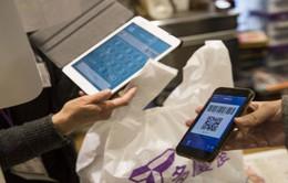 """[Tiêu điểm] Ngăn chặn du khách nước ngoài thanh toán """"chui"""" bằng phần mềm trực tuyến"""