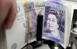 """Brexit """"cứng"""" có thể khiến các ngân hàng trung ương giảm nắm giữ đồng Bảng Anh"""