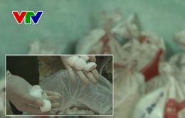 Quảng Nam tạm giữ 7 tạ hóa chất nghi là cyanua dùng để khai thác vàng