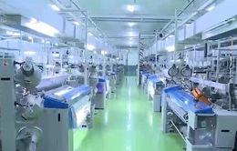 Nâng cao chất lượng vải may, nhiều DN Việt hướng tới thị trường xuất khẩu