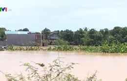Sơ tán hơn 1.000 hộ dân vì lũ sông Mã dâng cao