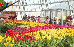 Hội thảo quốc tế về du lịch Khánh Hòa: Cần liên kết vùng để phát triển
