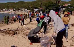 Tỉnh đoàn Bình Định ra quân làm sạch biển
