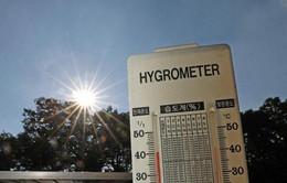 Hàn Quốc: Số ca tử vong do nắng nóng tăng lên mức kỷ lục