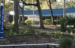 Australia: Hàng trăm học sinh tại một trường học nhiễm cúm