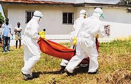 WHO cảnh báo nguy cơ lây lan virus Ebola tại châu Phi