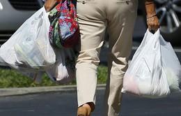 Quốc gia Mỹ Latin đầu tiên cấm sử dụng túi nylon