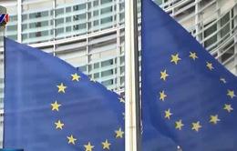 EU nỗ lực bảo vệ các lợi ích kinh tế tại Iran