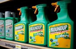 Tranh cãi về thuốc diệt cỏ Glyphosate