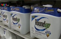 Tòa phúc thẩm ở Pháp bác đơn kháng cáo của công ty hóa chất Monsanto