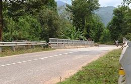Lâm Đồng đầu tư 9 công trình cầu treo cấp bách