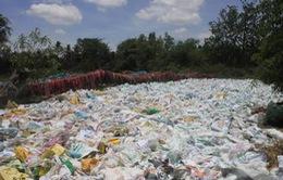 Thực trạng và tác hại của việc sử dụng túi nylon
