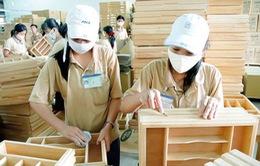 7 tháng đầu năm, xuất khẩu gỗ và lâm sản đạt hơn 5 tỷ USD