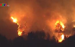 Cháy rừng lan rộng tại Mỹ: Ít nhất 7 người chết, hơn 1.000 ngôi nhà bị thiêu rụi