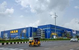 Ikea thành công bất chấp thách thức từ thương mại điện tử