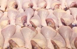 Việt Nam nhập hơn 100.000 tấn thịt lợn và gà giá rẻ 6 tháng đầu năm