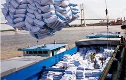 Tổ chức gặp gỡ doanh nghiệp Việt - Trung, thúc đẩy xuất khẩu gạo sang Trung Quốc
