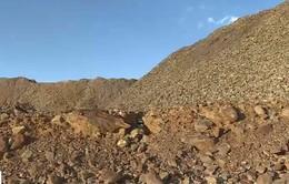 Chất độc từ đào vàng đe dọa tính mạng người dân tại Johannesburg, Nam Phi