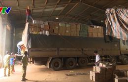Đắk Nông bắt giữ hơn 500 kg táo khô, xí muội không rõ nguồn gốc