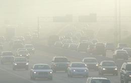 Ô nhiễm không khí tăng nguy cơ mắc bệnh thận mãn tính